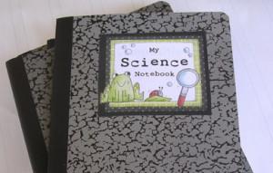 Science notebooks rock!